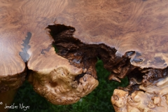 Polished burl.