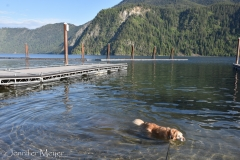 Bailey swam at the empty boat launch.