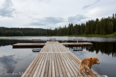 We checked out the dock at Little Diamon Lake.