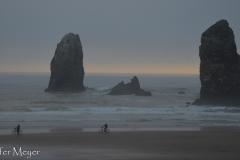 The beach was so foggy.