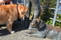 Bailey wasn't sure what to make of the bronze dog.
