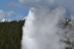 Our first Yellowstone stop was Old Faithful.