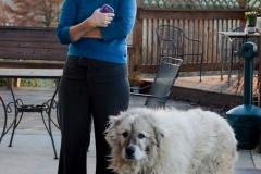 Rachel one of their dogs, Thor.