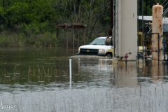 This truck was driving in this flooded lot.