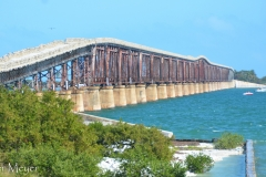 It was built as a railway bridge in the early 1900s, then converted to a road in the 50s.