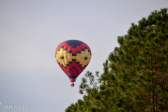 One morning, I saw this balloon flying nearby.