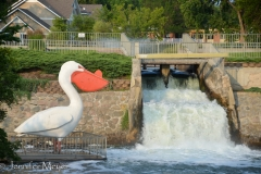 The giant pelican is a town landmark.