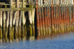 Colorful pilings.