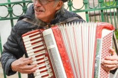 Accordian player in the plaza.