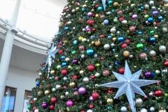 And a giant Christmas tree inside.