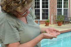 Kate rescued a lizard from the pool.