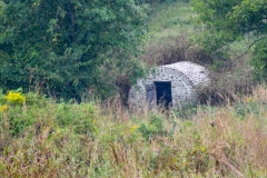 Ray children were charged with carrying water from the springhouse for the wounded.