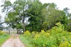 The road crosses Wilson Creek.