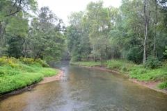 Wilson Creek.